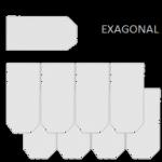 EXAGONAL